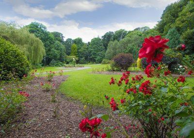 Listowel-Park-Flowers