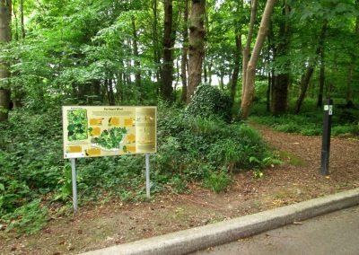Listowel-Park-Gurtinard-Walk-Biodiversity