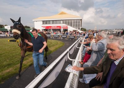 Listowel-Races-At-The-Parade-Ring
