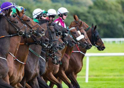 Listowel-Races-Under-Starters-Orders